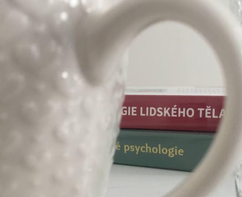 Zasvěcení do kruhu vyvolených, kteří znají krutou pravdu o tom, co všechno psychologové vlastně dělají kromě povídání si s lidmi
